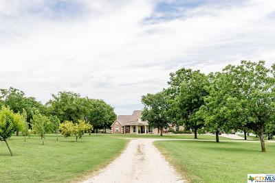 Bell County Single Family Home For Sale: 11796 Wedel Cemetery Road