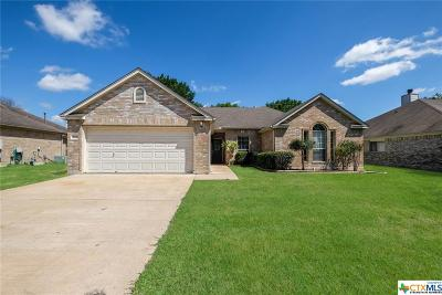 New Braunfels Single Family Home For Sale: 454 Walnut Heights Boulevard