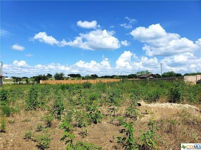 Salado Residential Lots & Land For Sale: 1052 Park View Drive
