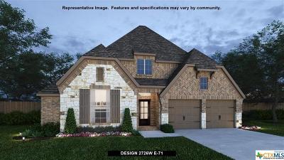 San Antonio Single Family Home For Sale: 425 Ricadonna