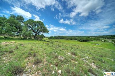 Burnet County Single Family Home For Sale: 1435 County Road 220