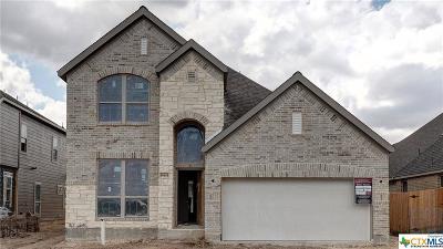 San Antonio Single Family Home For Sale: 14414 Hallows Grv