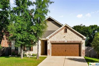 San Marcos Single Family Home For Sale: 306 Autumn Willow Drive
