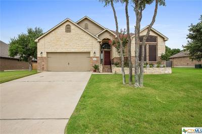Temple, Belton Single Family Home For Sale: 2501 Twin Ridge Court