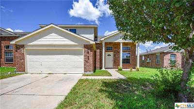 Killeen Single Family Home For Sale: 6000 Horne Drive