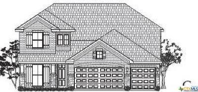 San Antonio Single Family Home For Sale: 28907 Diana Falls