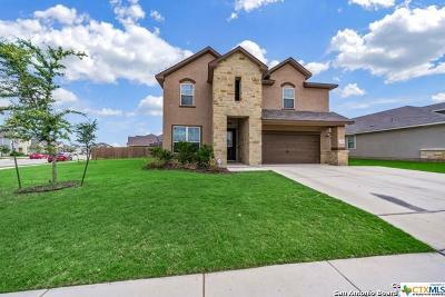 San Antonio Single Family Home For Sale: 13155 Shoreline Drive