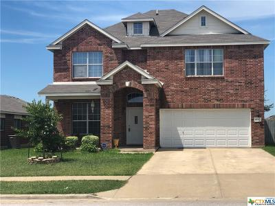 Killeen Single Family Home For Sale: 4207 Snowy River Drive
