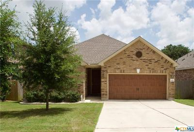 San Marcos Single Family Home For Sale: 505 Hunters Hill Drive