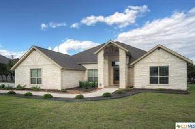 New Braunfels Single Family Home For Sale: 779 Haven Point Loop