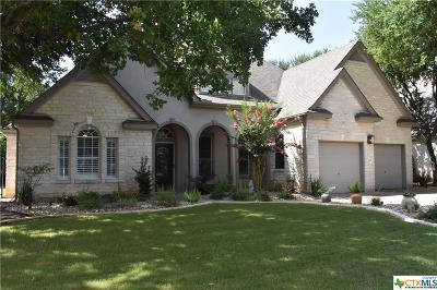 Williamson County Single Family Home For Sale: 121 Brentwood Drive