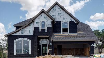 San Antonio Single Family Home For Sale: 1222 Cadogan Square