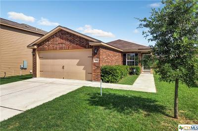 Williamson County Single Family Home For Sale: 121 Johnston Lane