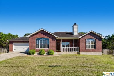 Canyon Lake Single Family Home For Sale: 538 Village View Drive
