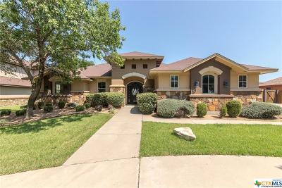 Belton Single Family Home For Sale: 1160 Mescalero Trail