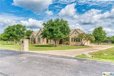 Spring Branch Single Family Home For Sale: 115 Lantana Ridge