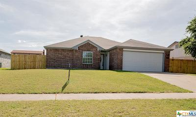 Killeen Single Family Home For Sale: 5007 Paragon Drive