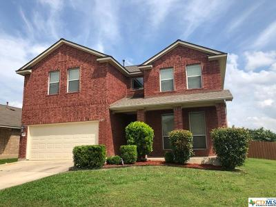 Kyle Single Family Home For Sale: 317 Bloomsbury Drive