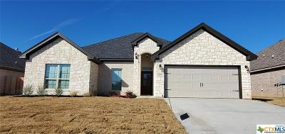 Bell County, Coryell County, Lampasas County Single Family Home For Sale: 2506 Emerald Dove Drive