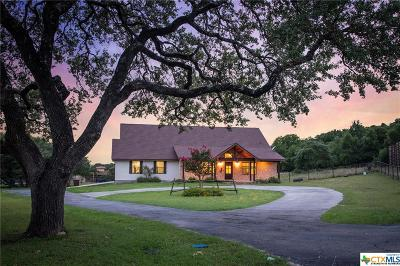 New Braunfels Single Family Home For Sale: 132 Cactus Breeze