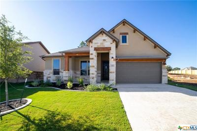 Georgetown Single Family Home For Sale: 308 Morning Ridge Court