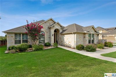 New Braunfels Single Family Home For Sale: 250 Hamburg Avenue