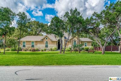 New Braunfels Single Family Home For Sale: 559 Solms Forest
