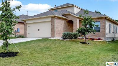 Kyle Single Family Home For Sale: 110 Tios Creek Drive