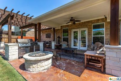 Round Rock Single Family Home For Sale: 2620 Los Alamos Pass