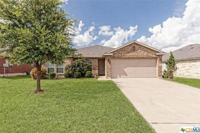 Temple, Belton Single Family Home For Sale: 10012 Birch Tree Drive