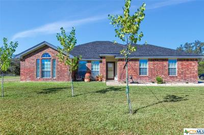 Kempner Single Family Home For Sale: 219 County Road 3351
