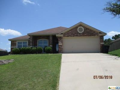 Killeen Single Family Home For Sale: 4904 Lightning Rock Trail