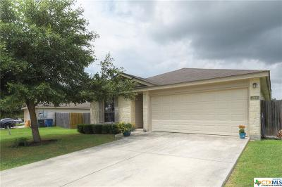 New Braunfels Single Family Home For Sale: 314 Ibis Falls Drive