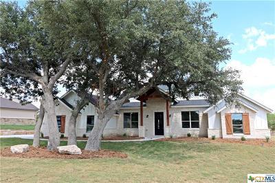 Georgetown Single Family Home For Sale: 109 Quail Run