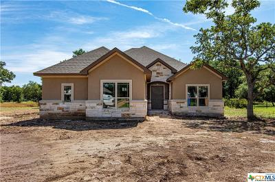 Georgetown Single Family Home For Sale: 116 San Juan
