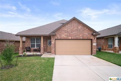 Killeen Single Family Home For Sale: 3310 Parkmill Drive