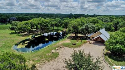 Lampasas Single Family Home For Sale: 20442 N Us Highway 281