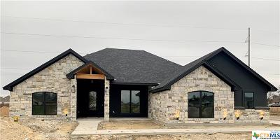 Temple, Belton Single Family Home For Sale: 3805 Green Tree Loop