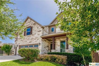 Williamson County Single Family Home For Sale: 4517 Miraval Loop