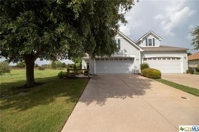Georgetown Single Family Home For Sale: 257 Bonham Loop