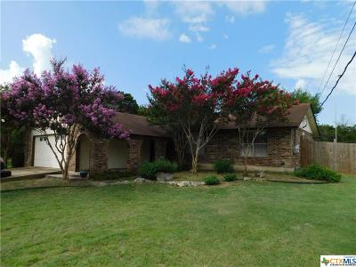 Canyon Lake Single Family Home For Sale: 161 Susie Drive