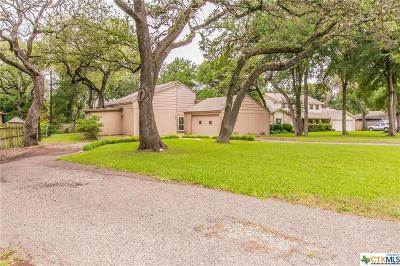 Belton Single Family Home For Sale: 239 Woodland Trail