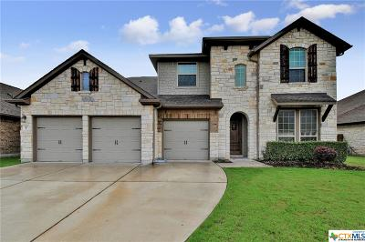 Liberty Hill TX Single Family Home For Sale: $397,500