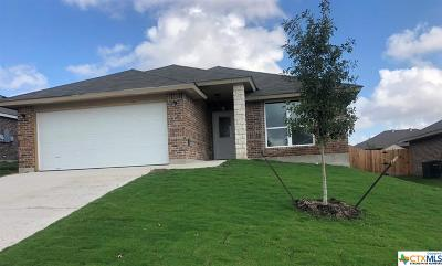 Bell County, Coryell County, Lampasas County Single Family Home For Sale: 826 Paseo Del Plata