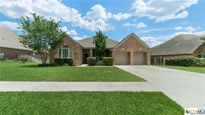 New Braunfels Single Family Home For Sale: 2339 N Oak Pebble Street