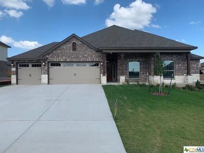 Belton Single Family Home For Sale: 5513 Fenton Lane