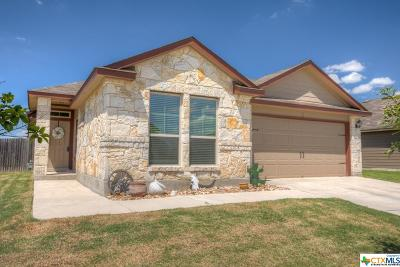 New Braunfels Single Family Home For Sale: 2661 Lonesome Creek Trail