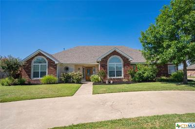 Coryell County Single Family Home For Sale: 205 River Ridge Drive