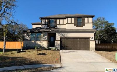 San Marcos Single Family Home For Sale: 253 Mary Max Circle
