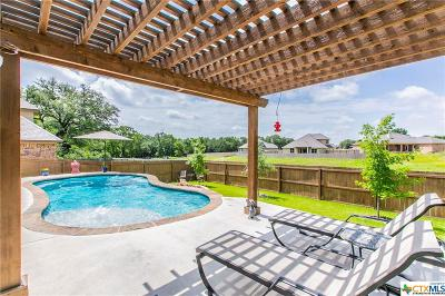 Belton Single Family Home For Sale: 1743 Yturria Drive